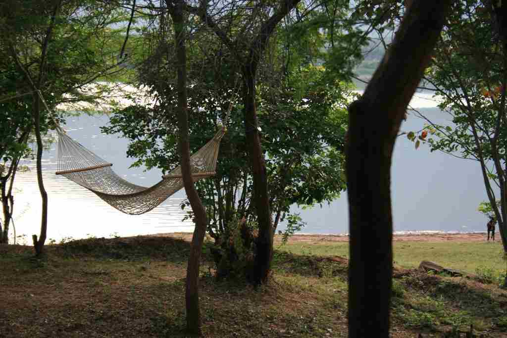 Hammock on the lakeside